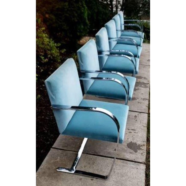 40-knoll-flat-bar-brno-chairs-by-ludwig-mies-van-der-rohe-1029