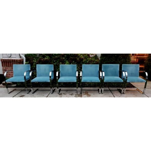 40-knoll-flat-bar-brno-chairs-by-ludwig-mies-van-der-rohe-6559